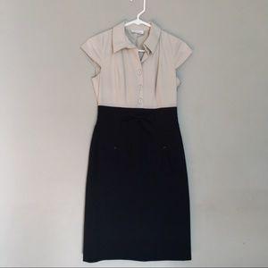 Calvin Klein   Black & Cream Knee Length Dress